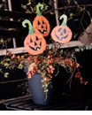 Jack O Lantern Trio - Asst. 3 - Round Top Fall Collection