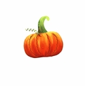 Lil Punkin Magnet - Round Top Fall Collection