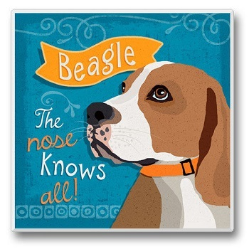 "Absorbent Single Tile Coaster - ""Beagle"""