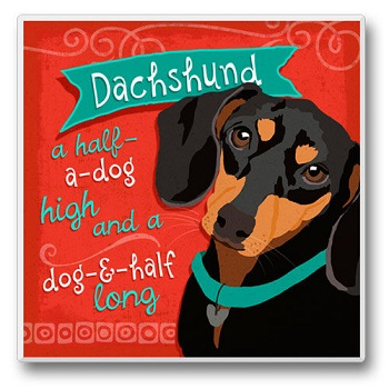 "Absorbent Single Tile Coaster - ""Dachshund"""