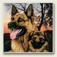 "Absorbent Single Tile Coaster - ""German Shepherd"""