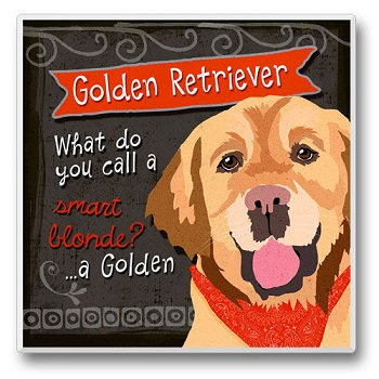 "Absorbent Single Tile Coaster - ""Golden Retreiver"""