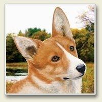 "Absorbent Single Tile Coaster - ""Welsh Corgi"""