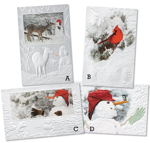"Assorted Boxed Christmas Cards - ""Stranger in the Woods"""