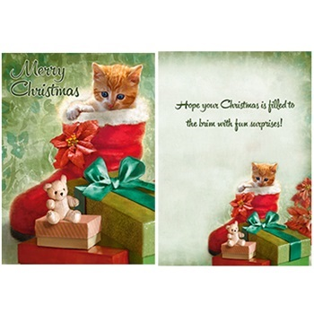 "Boxed Christmas Cards - ""Kitten In A Stocking"""