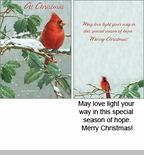 "Boxed Christmas Cards - """"Winter Cardinal"""