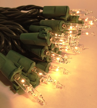 Mini Bulb String Lights - Clear - Electric/Green Cord -  Indoor/Outdoor Premium Light String - Set of 50