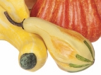 """Decorative Gourd - """"Decorative Artificial Gourd"""" - Yellow & Green - Small"""