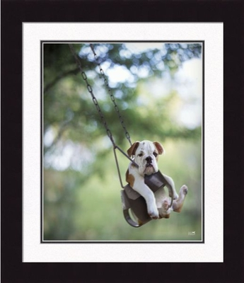 """Framed Picture - """"Buster"""" - 20"""" x 24"""""""