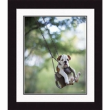 "Framed Picture - ""Buster"" - 20"" x 24"""