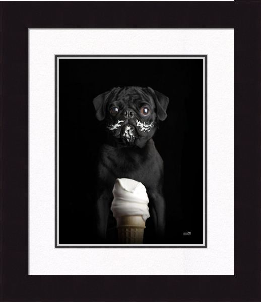"Framed Picture - ""Frenchy"" - 20"" x 24"""
