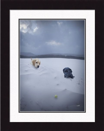 "Framed Picture  - ""Lewie & Clark  Snowy Day"" - 20""  x 24"""