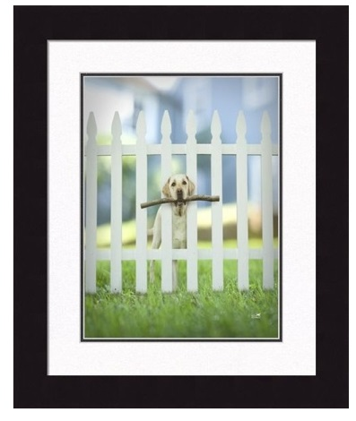 "Framed Picture - ""Sawyer"" - 16"" x 20"""