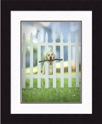 """Framed Picture - """"Sawyer"""" - 16"""" x 20"""""""