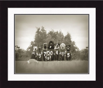 "Framed Picture - ""Bonecrushers"" - 20"" x 16"""