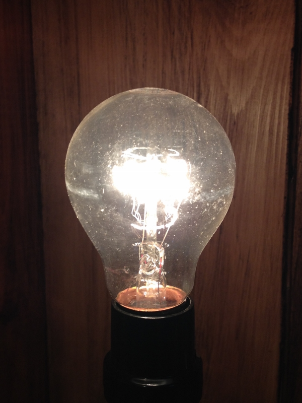 Super Long-Lasting Incandescent Light Bulb - 40W Clear - A19 - Lasts 10,000 Hours!