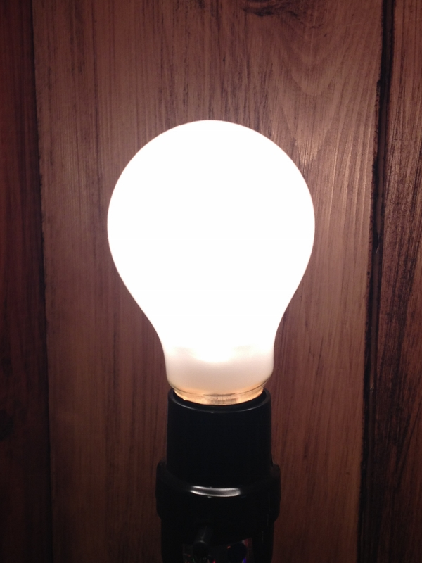 Super Long-Lasting Incandescent Light Bulb - 60W Frosted - A19 - Lasts 10,000 Hours!
