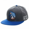 Sonic The Hedgehog: Pixel Sonic  Don't Blink Snapback Cap