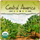 Organic Central American Beneficio Coffee (1lb Bag)