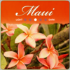 Maui Red Catuai Coffee (Free Sample)
