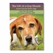 "<font color=""#a41a2d"">New!</font> The Gift of a Gray Muzzle: Active Care For Senior Dogs - 6-DVD Set"