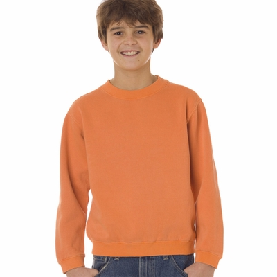 Comfort Colors Youth Sweatshirt: Crewneck (C9755)