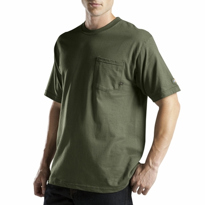 Dickies Men's T-Shirt: (WS417)