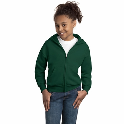Youth 7.8 oz. ComfortBlend® EcoSmart® 50/50 Full-Zip Hood: (P480)