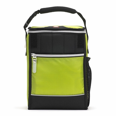 Igloo Cooler Bag: Avalanche 8-Can Capacity (G9040)