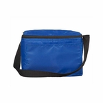 Liberty Bags Cooler Bag: (1691)