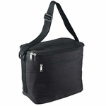 Liberty Bags Cooler Bag: Polyester 12-Pack Fit (1695)