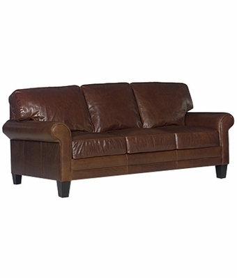 fortable Leather Sleeper Sofa w Rolled Arms