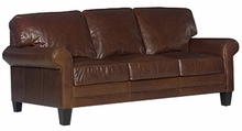 Calvin Transitional Leather Queen Sleeper Sofa Bed