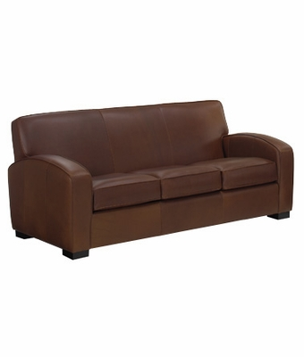 Hayden Designer Style Contemporary Leather Queen Sofa Bed