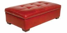 Rylan Contemporary Tufted Top Leather Storage Ottoman