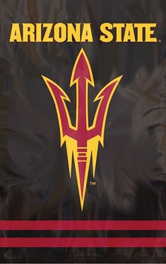Arizona State Applique Banner Flag