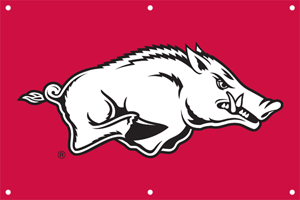 Arkansas 2 x 3 Horizontal Applique Fan Banner