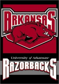 Arkansas BSI Two Sided Banner (P)