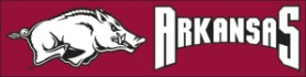 Arkansas Eight Foot Banner