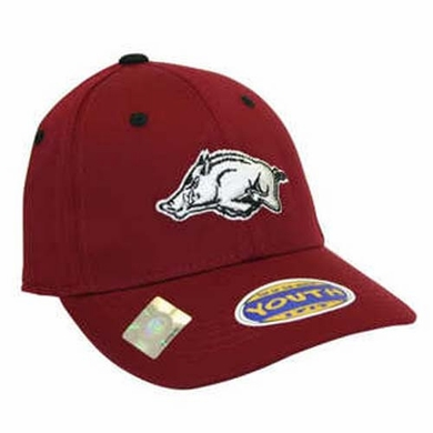 Arkansas Youth FlexFit Hat