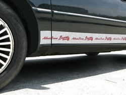 Atlanta Braves Car Trim Magnets