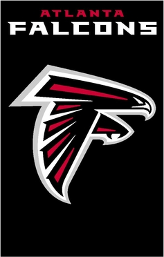 Atlanta Falcons Applique Banner Flag