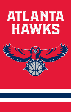 Atlanta Hawks Applique Banner Flag