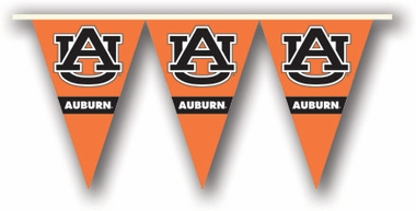 Auburn 25 Foot String of Party Pennants (P)