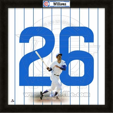 "Billy Williams, Cubs UNIFRAME 20"" x 20"""