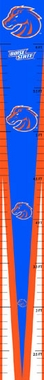 Boise State Growth Chart