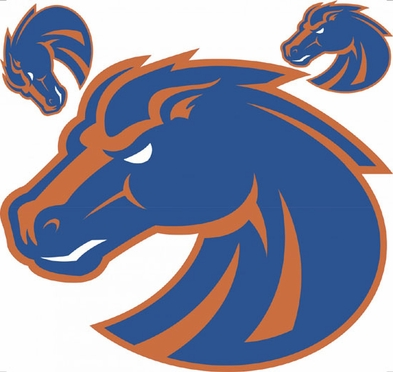 Boise State Wallmarx Large Wall Decal
