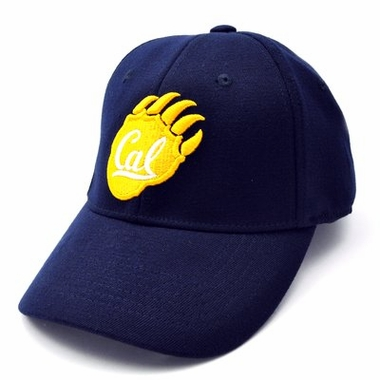 Cal Team Color Premium FlexFit Hat