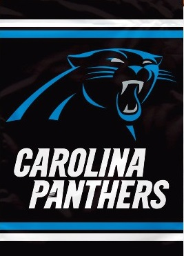 Carolina Panthers 2 Sided Banner (P)