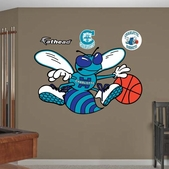 Charlotte Bobcats Wall Decorations